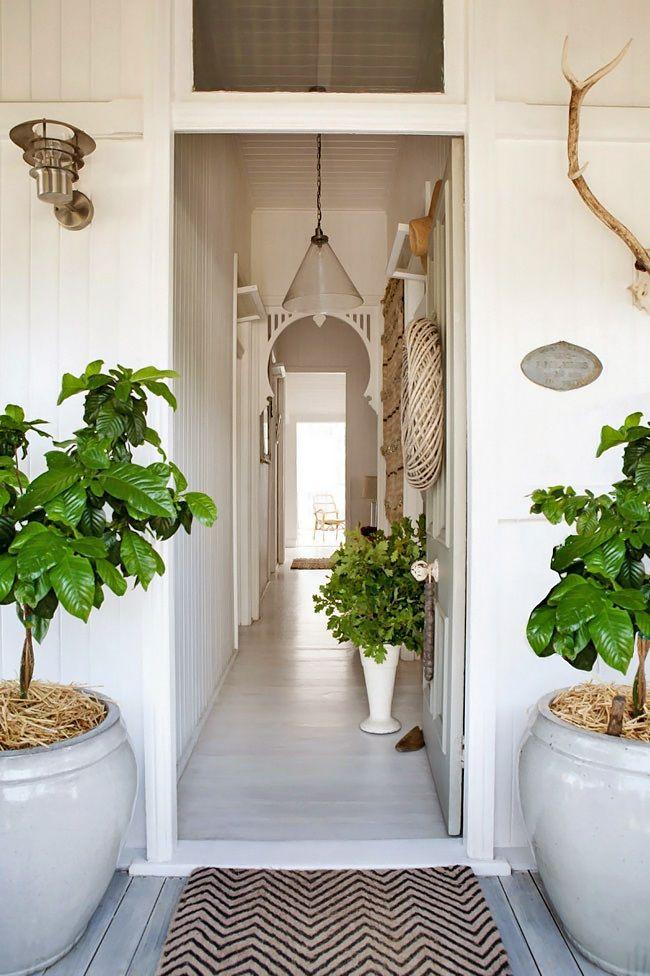 oversize planters