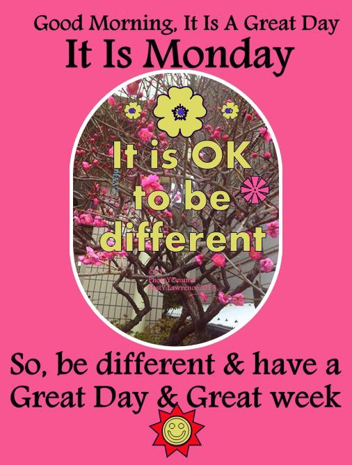 ☺ Good Morning, It Is Monday, ☺ Have A Great day & A Great week.