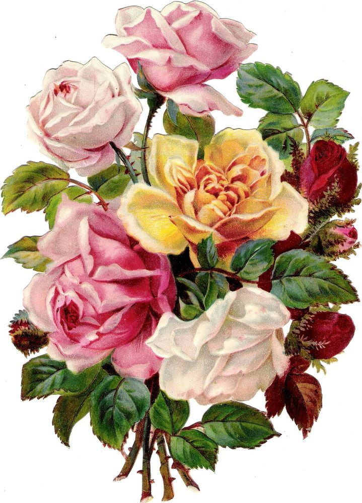 Oblaten Glanzbild scrap die cut chromo Rosen XL 23,5 cm  Blumen Strauß roses
