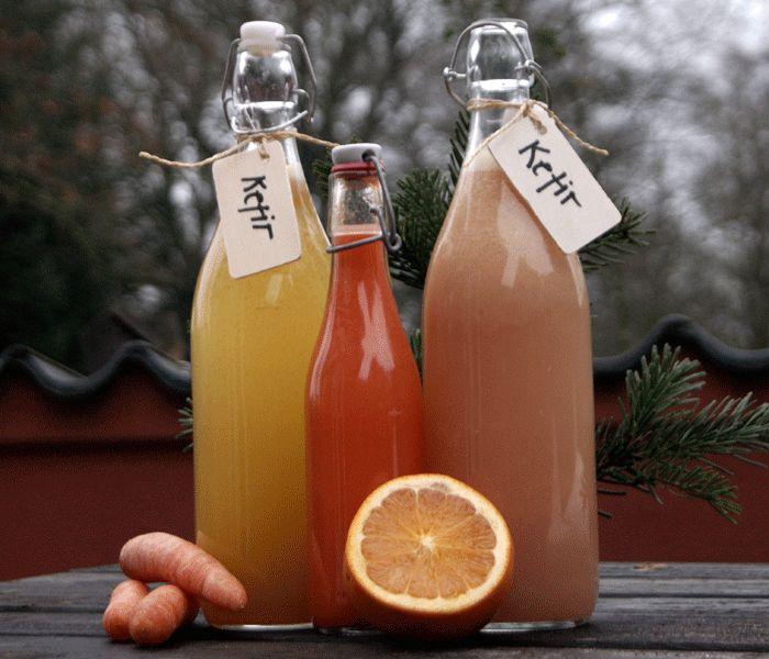 kefir - the love drink af Tina Holm