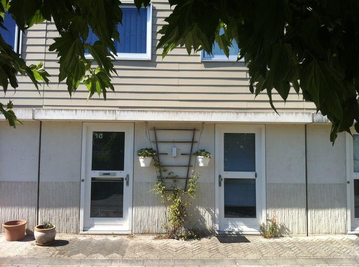 Huis met moerbei boom