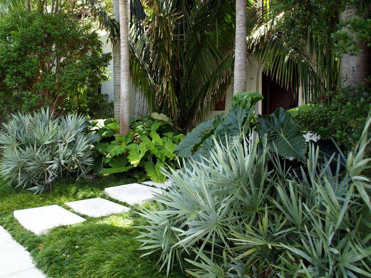 Bay Road Garden | Raymond Jungles, Inc.