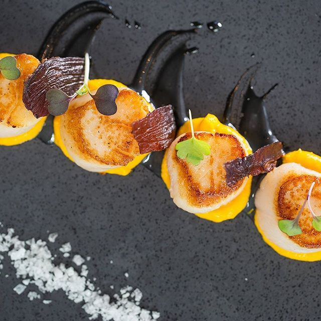 Canadian Scallops with Jerusalem artichokes, squid ink aioli and proscuitto. It's going to be a delicious day!