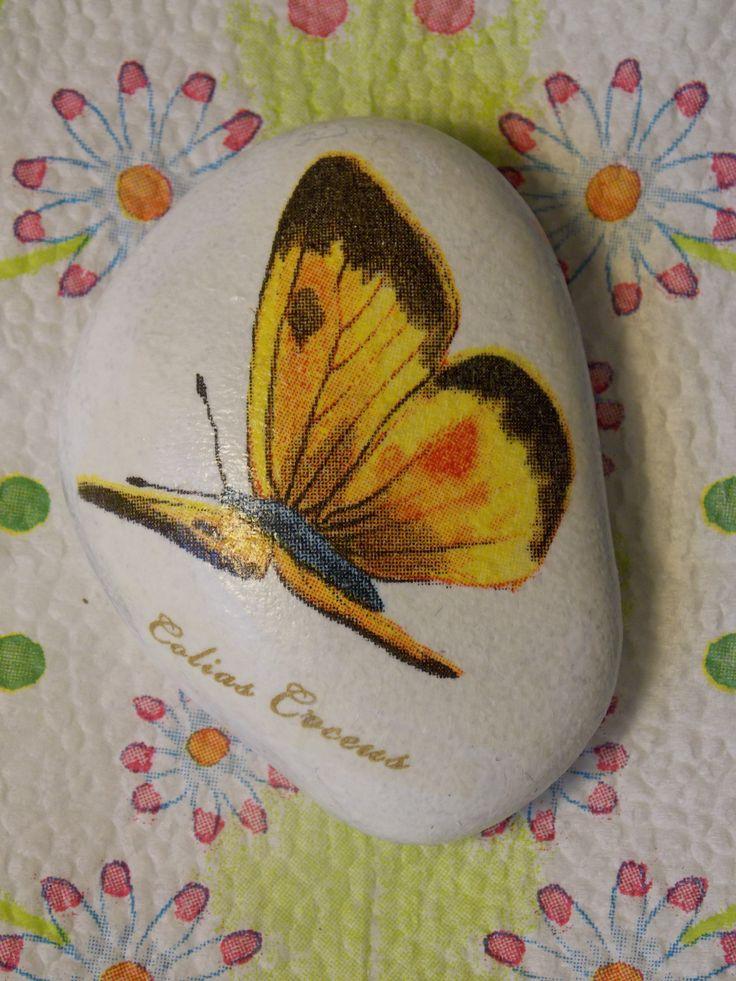 Kamienky Motýliky pre šťastie Kolekcia ozdobných darčekových kamienkov pre potešenie, alebo ako talizmany pre šťastie. Okruhliaky zo žuly natreté bielym akrylovým podkladom sú dotvorené technikou decoupage s krásnymimotívmi motýlikov, slatinskými názvami. Kamienky sú lakované transparentným lakom. Priemer cca 4-6 cm