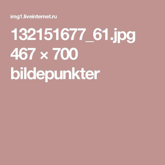 132151677_61.jpg 467 × 700 bildepunkter