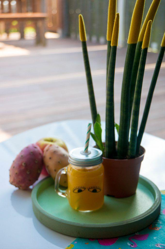 Cactus-Appel Sapje – Babies Kitchen