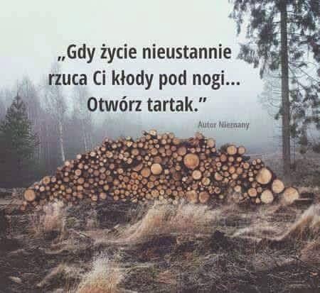 SUPER PIĄTKU :-) http://www.pawelgrzech.pl/