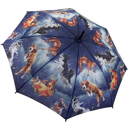 Dog Umbrella Leash Uk