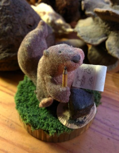 """""""The squirrel's whimsical little smile never fails to brighten my mood."""" #birthday, #exgirlfriend, #gift, #girlfriend, #miniature, #relationship, #squirrel #ttmproject"""