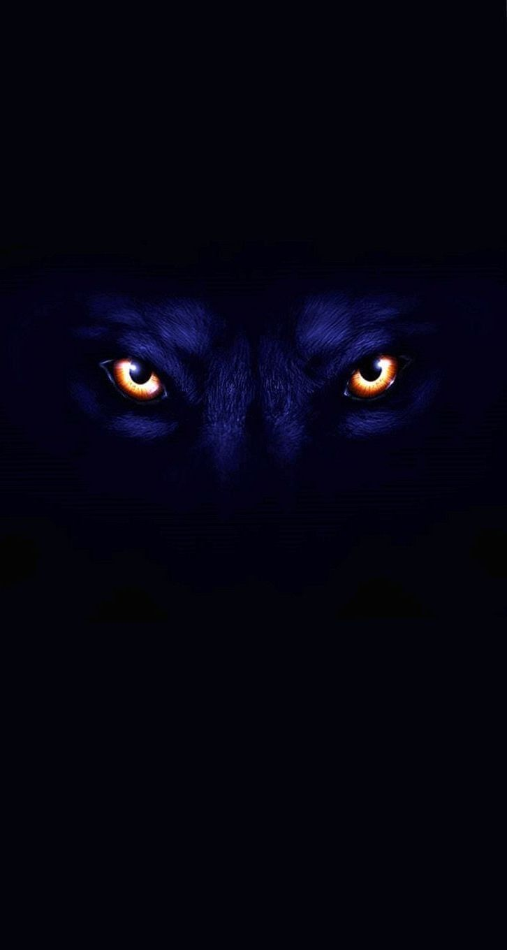 Dark Wolf Wallpapers Iphone In 2020 Wolf Face Iphone Wallpaper Wolf Black Wallpaper