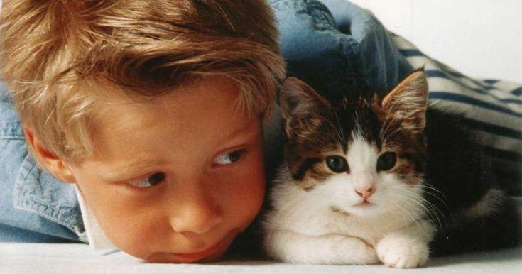 Wer seinen Lieben zu Weihnachten trotzdem eine tierische Freude machen möchte, ist mit einer Tierpatenschaft gut beraten