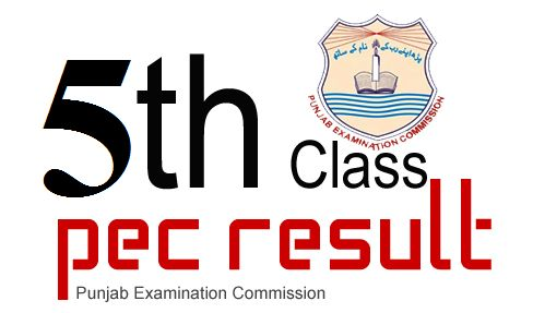 PEC 5th Class Result 2019 Online Gazette Download PDF All Punjab