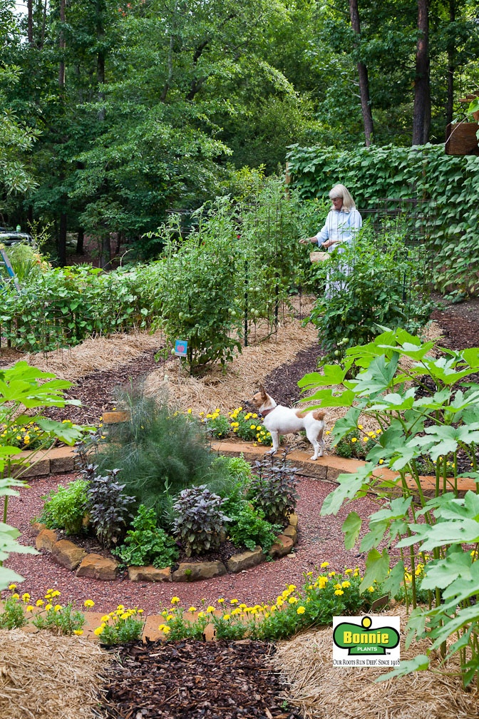 a bonnie garden designed by a talented landscape designer in alabama lots of inspiration and