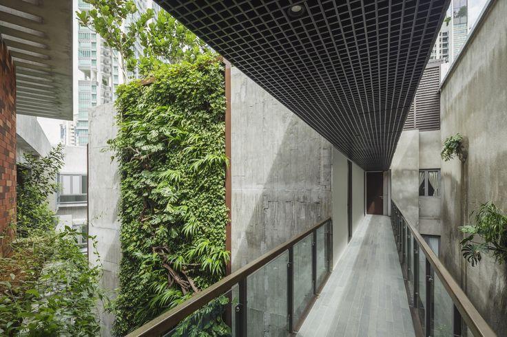 Killiney Road / ipli architects