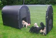 Recycled Plastic Dog Kennel