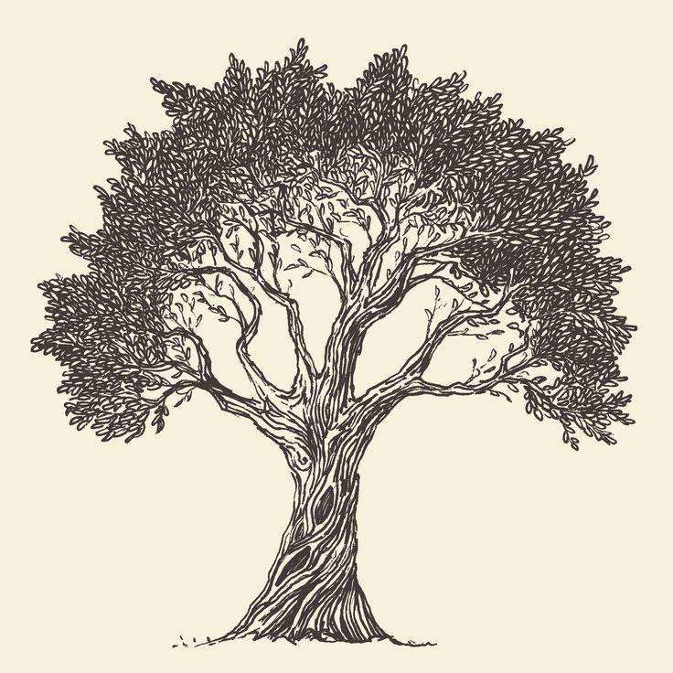 tree_0011.jpg (5000×5000)