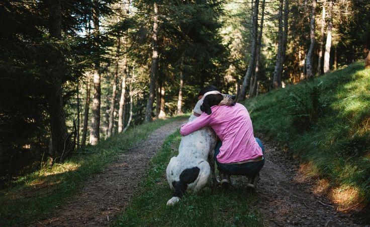 Die Beziehung zwischen Hund und Mensch kann sehr glücklich machen, ist aber nicht immer einfach