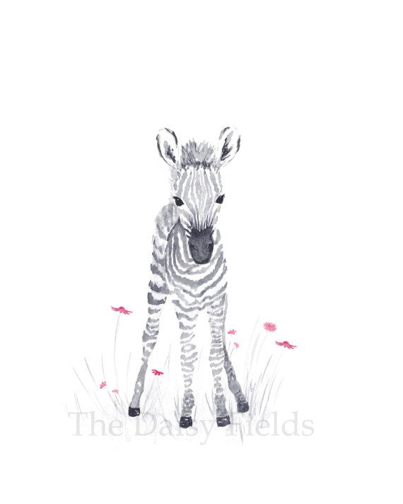 Watercolor Baby Zebra Art by TheDaisyFields                                                                                                                                                                                 More