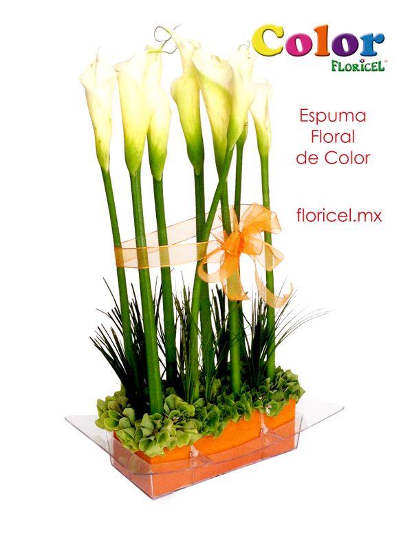 FLORICEL también con increible espuma floral de color.