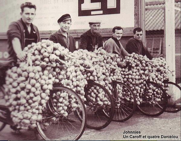 Johnnies de Roscoff - Oignons rosés - Finistère Bretagne