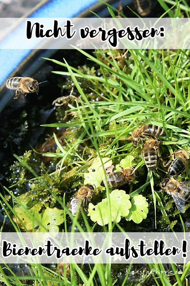 Superb BIENENTR NKE bitte nicht vergessen die Bienen brauchen wie wir Fl ssigkeit gerade im Sommer