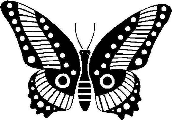 22 best Butterflies images on Pinterest Butterflies, Butterfly