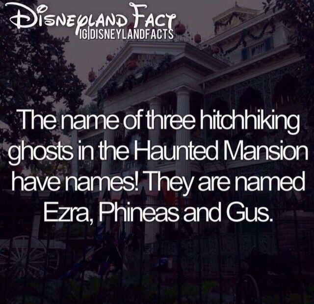 Disneyland facts