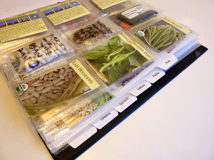 Seed Binders - an easy, inexpensive way to organize and store seeds using 3 ring binders, baseball card sheet protectors, and small zip lock bags.