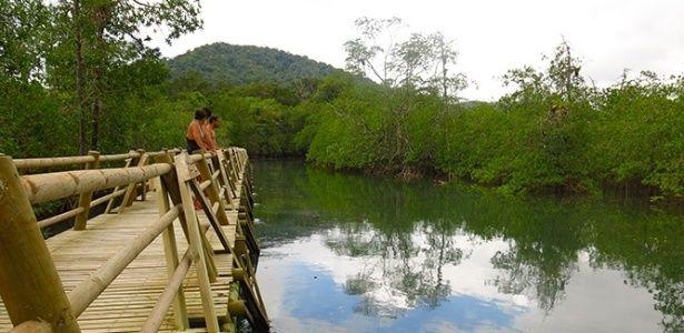 Na costa do Pacífico colombiano, Bahia Solano tem praia, selva e baleias - Roteiros - Guia de Viagem - UOL Viagem