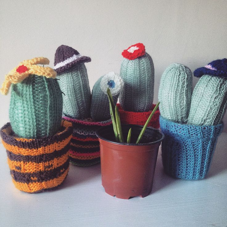 Knitted Cacti   Jenna Lee Alldread