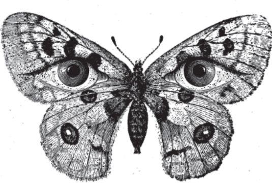 «Πεταλούδα σε Πηγάδι», ένα σκοτεινό παραμύθι για ενήλικες  #theater #theatre #theatro  http://fractalart.gr/petalouda-se-pigadi/