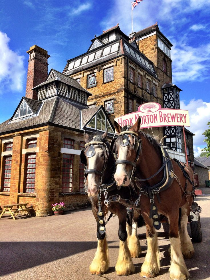 Hook Norton Brewery is a regional brewery in Hook Norton, Oxfordshire, England, several miles outside of the Cotswold Hills. Founded in...