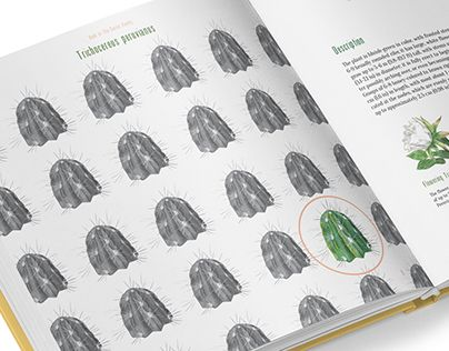 """Check out new work on my @Behance portfolio: """"Book of the Cactus Family"""" http://be.net/gallery/33080187/Book-of-the-Cactus-Family"""