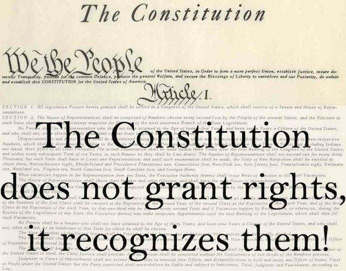What are Constitutional Rights?