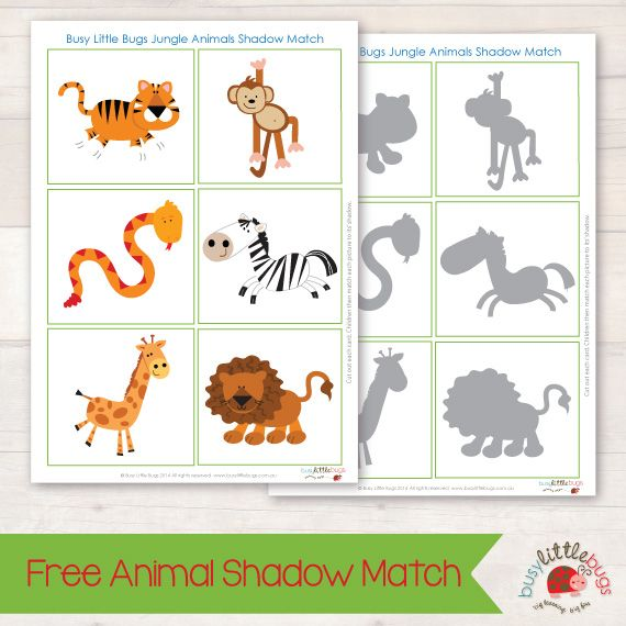 Free Jungle Animal Shadow Match Busy Little Bugs