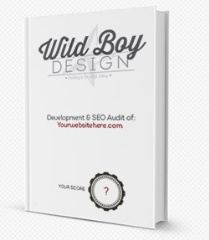 Get your free search engine optimization report. Really find out how your site is doing in Bing and Google.