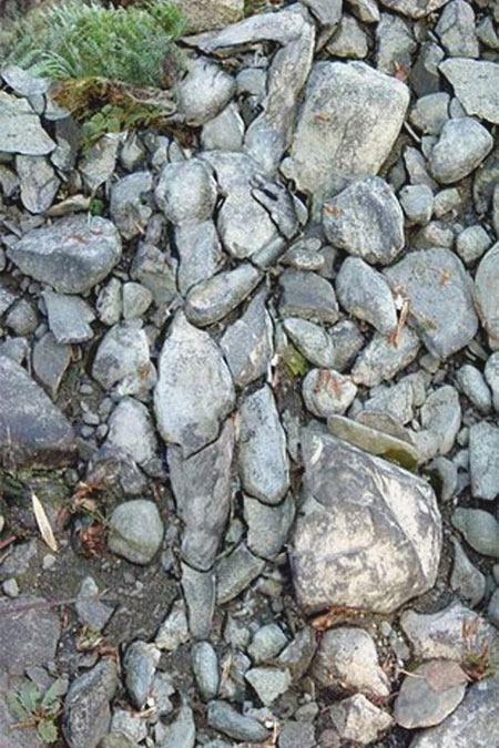 Lady of Stone: The Women, Inner Strength, Optical Illusions, Stones Art, The Rocks, Stones Wall, Hunger Games, Gardens Art, Rocks Art