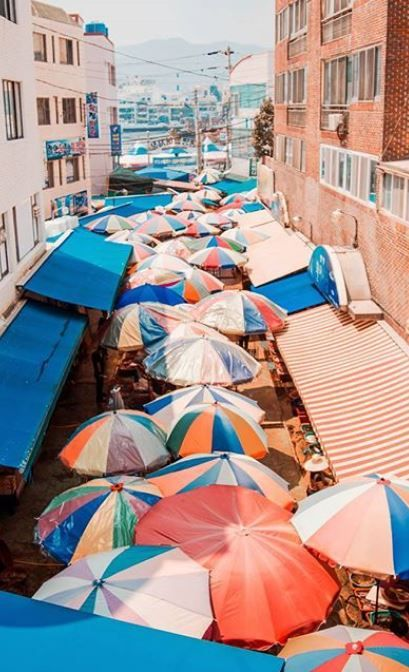 West Market // Tongyeong // South Korea // Hedgers Abroad