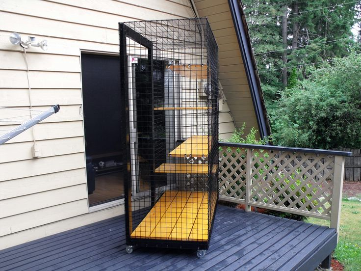 Outdoor cat enclosure on wheels Beautiful World Living Environments www.abeautifulwor...