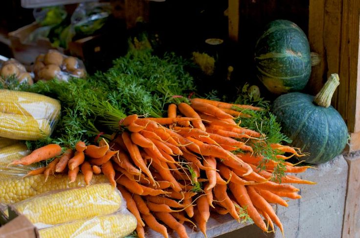 7 Farmers' Markets to try in HALIFAX | Halifax Sociable
