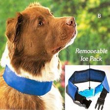 """COOL DOG COLLAR WITH REMOVABLE ICE PACK - SIZE SMALL (FITS NECK 11"""" TO 17"""")"""