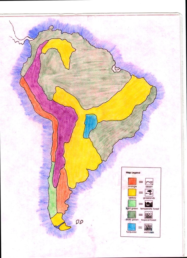 Science Biome Of South America