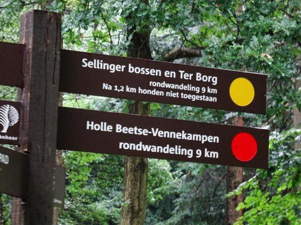 zoek niet langer #wandelen in #westerwolde filmpje youtu.be/zxOVBJtRJWwinfo staatsbosbeheer.nl/natuurgebieden…