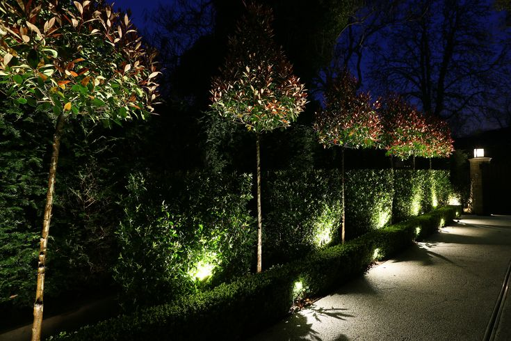 9 best step and uplights images on pinterest lighting for Garden lighting designs