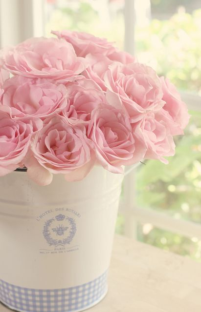 lovely pink roses: