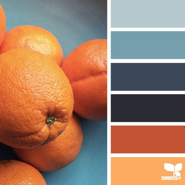 another inspiring photo from @elizabethmarkham in today's { citrus brights } ... thanks for another wonderful #SeedsColor photo share, Elizabeth!