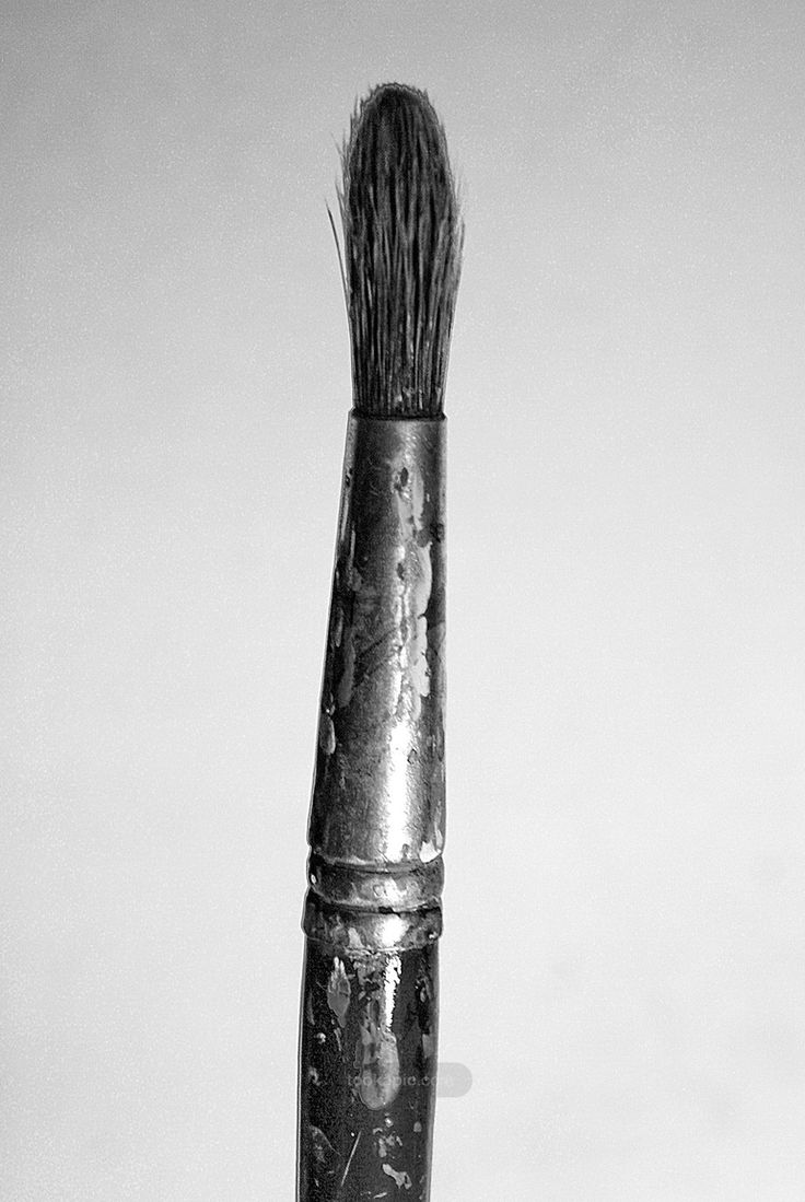 Portrait of an old brush,  topic of the week - painting accessories. Day 2 by BiesKa on tookapic