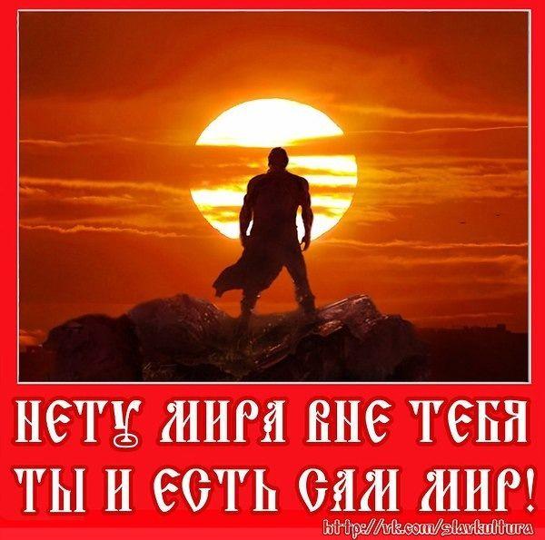 2364604555.jpg — Яндекс.Диск