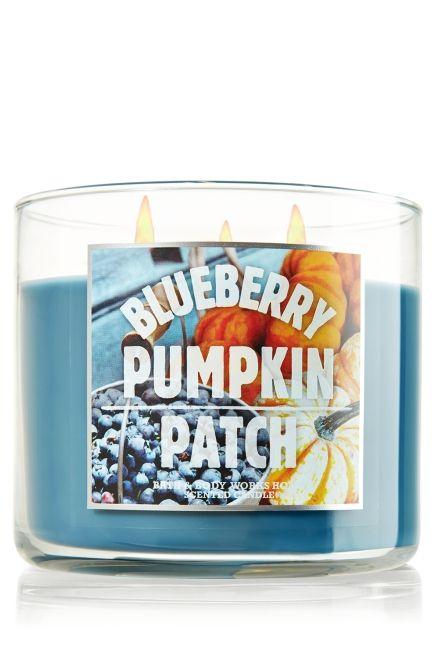 Blueberry Pumpkin Patch 14.5 oz. 3-Wick Candle - Slatkin & Co. - Bath & Body Works