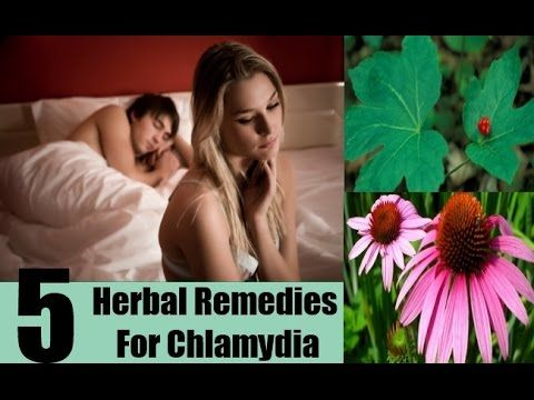Can Chlamydia be cured   How is Chlamydia treated